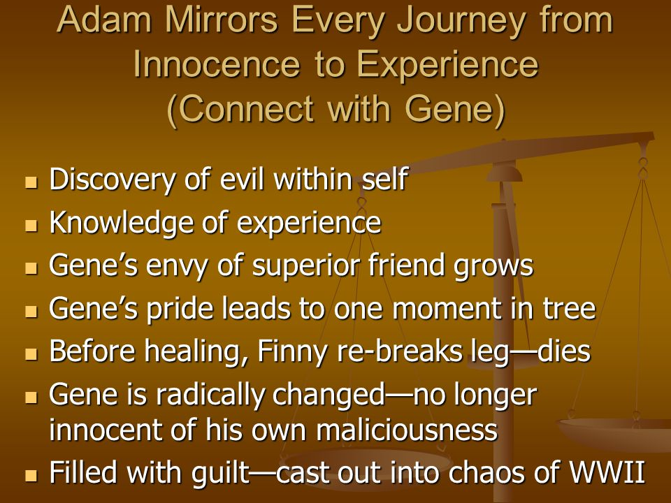 Adam Mirrors Every Journey from Innocence to Experience (Connect with Gene)
