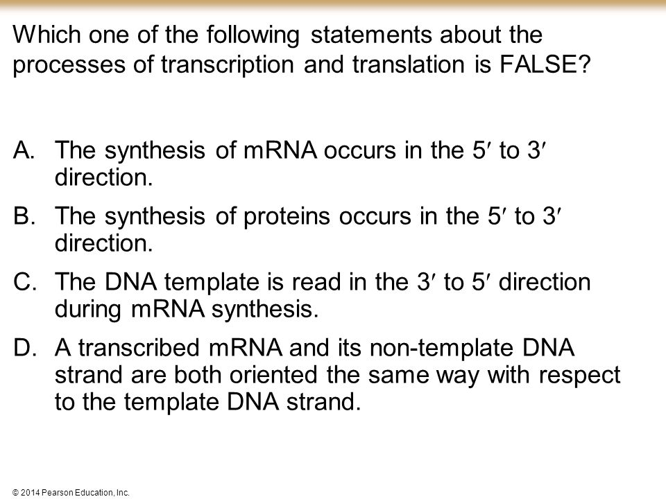 The synthesis of mRNA occurs in the 5 to 3 direction.
