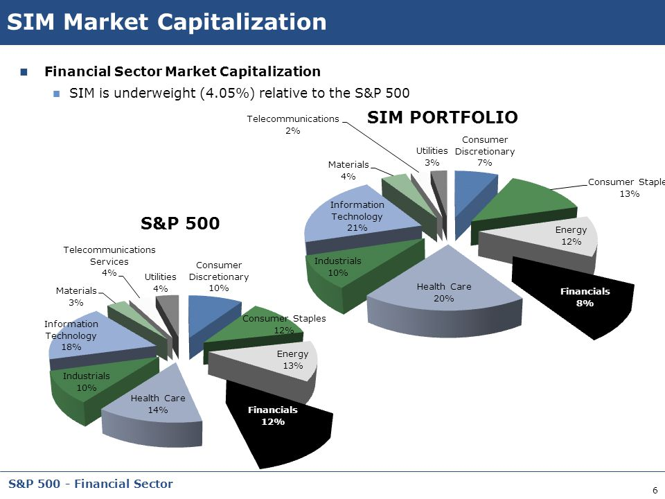 SIM Market Capitalization