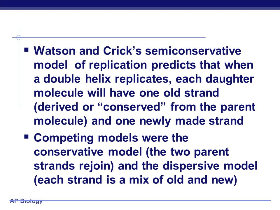 Watson and Crick's semiconservative model of replication predicts that when a double helix replicates, each daughter molecule will have one old strand (derived or conserved from the parent molecule) and one newly made strand