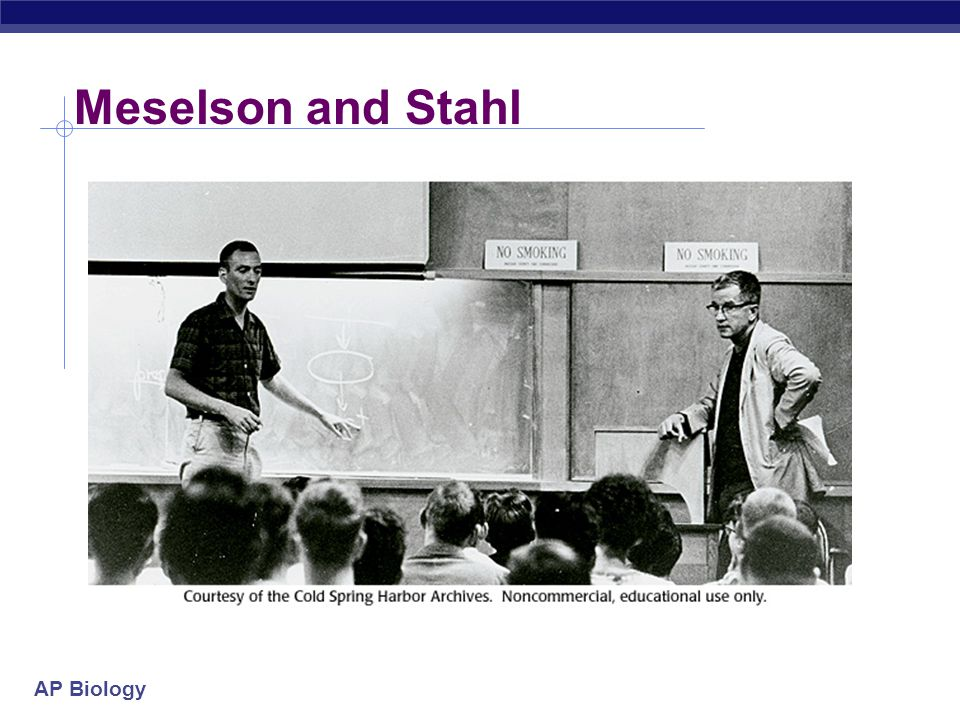 Meselson and Stahl