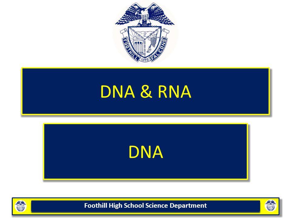 DNA & RNA DNA