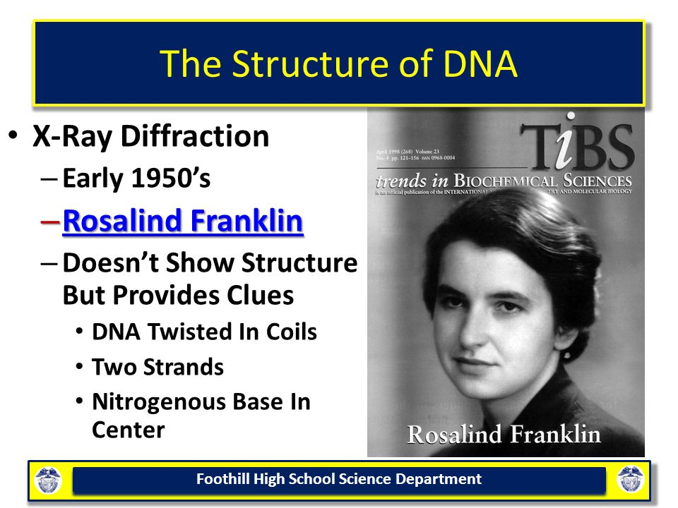The Structure of DNA X-Ray Diffraction Rosalind Franklin Early 1950's