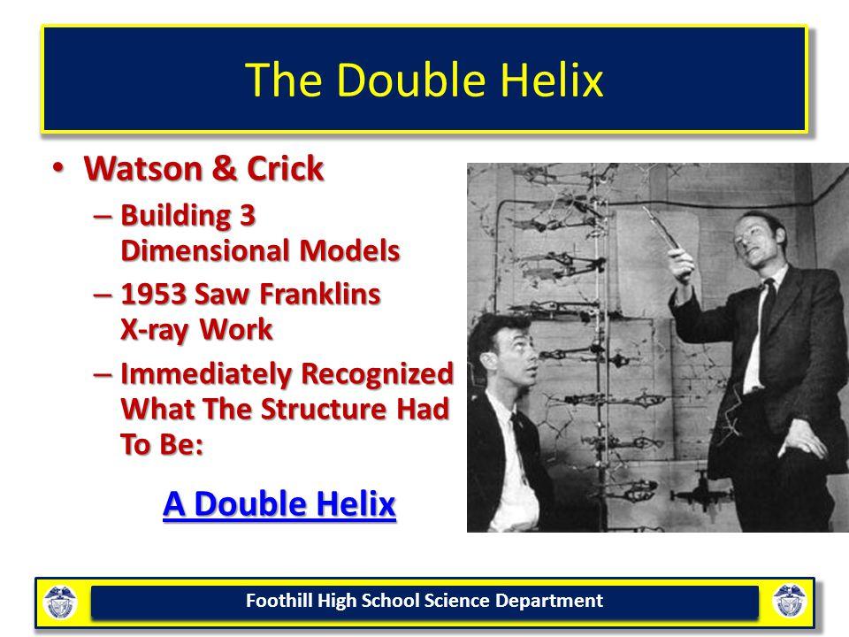The Double Helix Watson & Crick A Double Helix