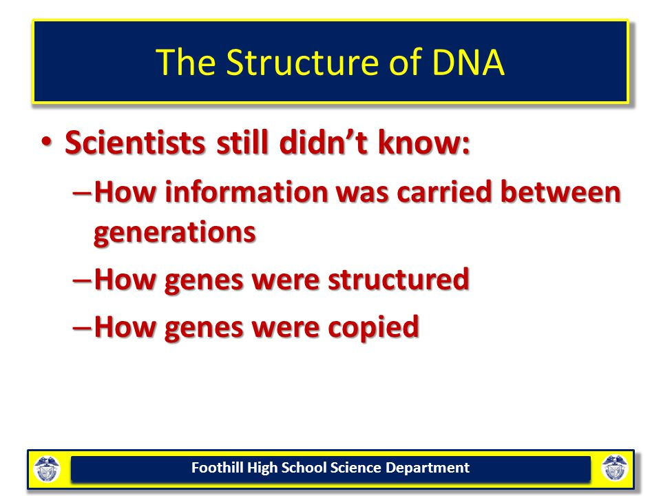 The Structure of DNA Scientists still didn't know: