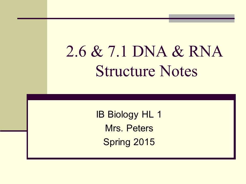 dna structure notes Notes over the structure of dna, which includes a powerpoint presentation and information about genes and base-pairs this is intended for high school biology students.