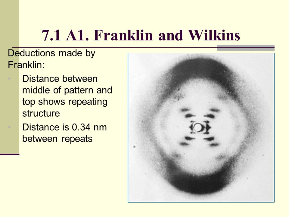 7.1 A1. Franklin and Wilkins Deductions made by Franklin: