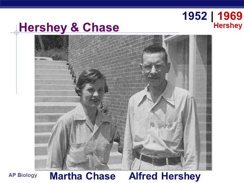 Hershey & Chase 1952   1969 Martha Chase Alfred Hershey Hershey