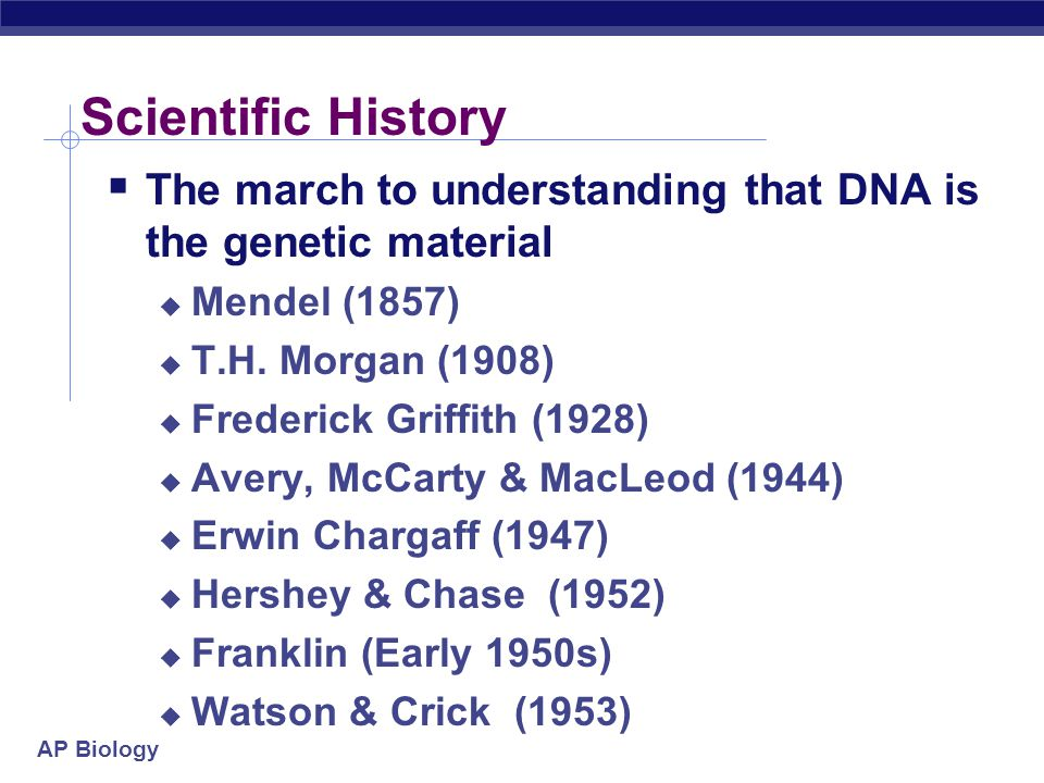 Scientific History The march to understanding that DNA is the genetic material. Mendel (1857) T.H. Morgan (1908)