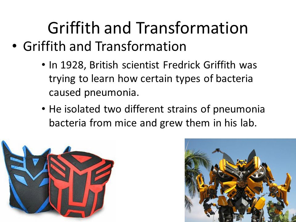 Griffith and Transformation