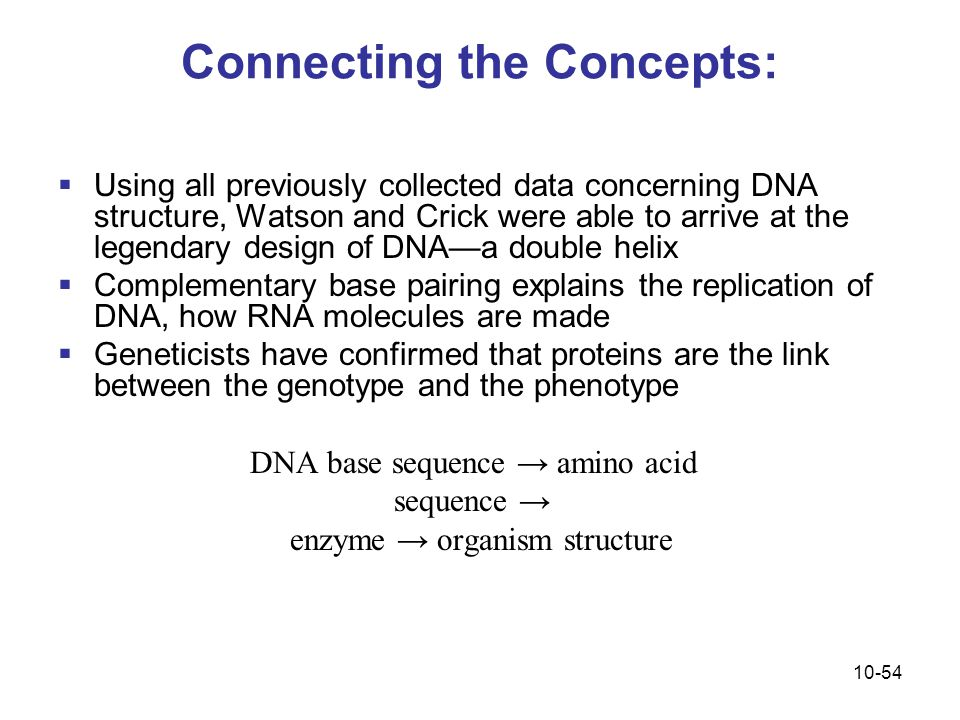 Connecting the Concepts: