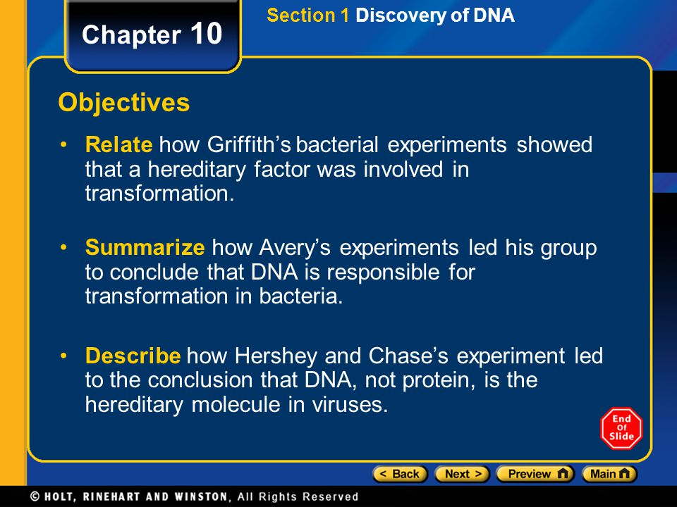 Section 1 Discovery of DNA
