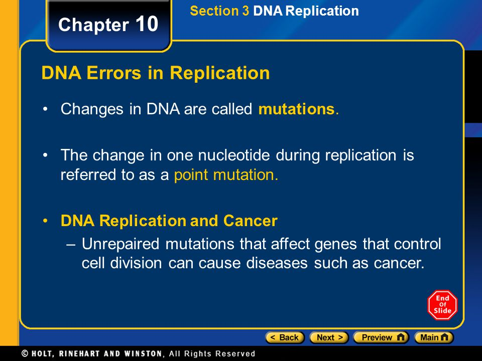 DNA Errors in Replication