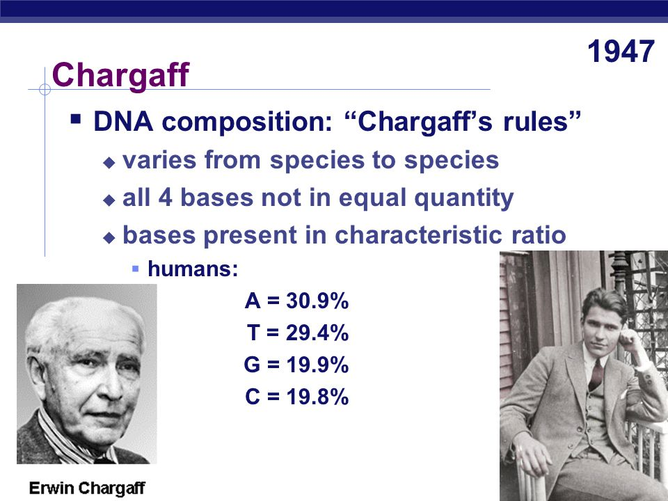 Chargaff 1947 DNA composition: Chargaff's rules