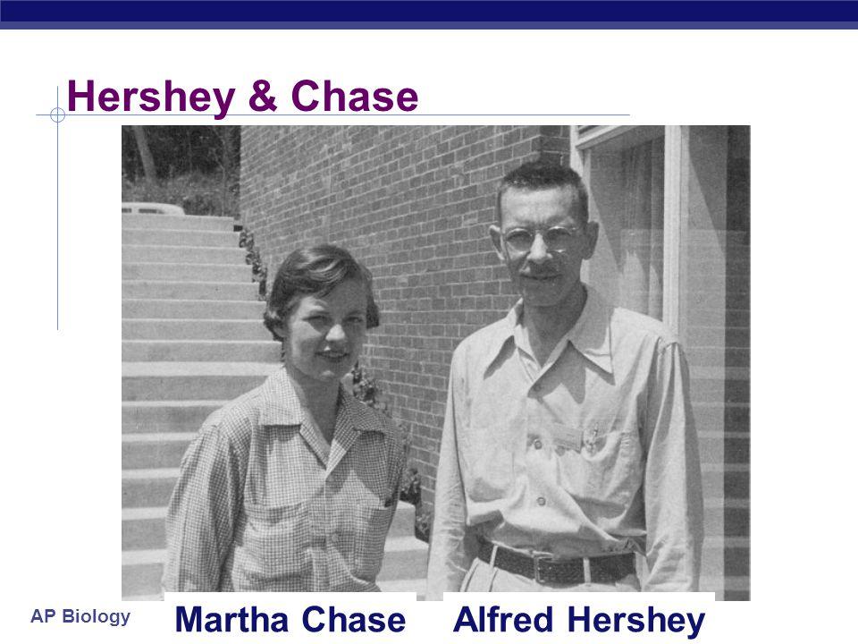 Hershey & Chase Martha Chase Alfred Hershey
