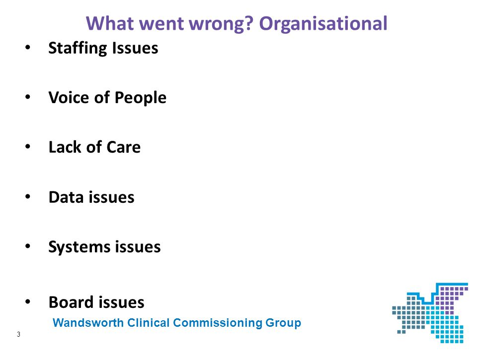 What went wrong Organisational