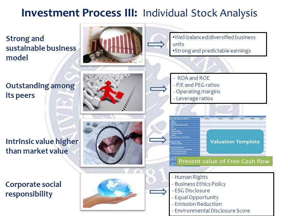 Investment Process III: Individual Stock Analysis