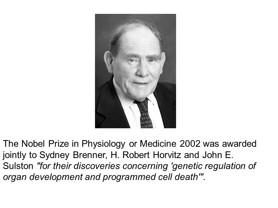 The Nobel Prize in Physiology or Medicine 2002 was awarded jointly to Sydney Brenner, H.