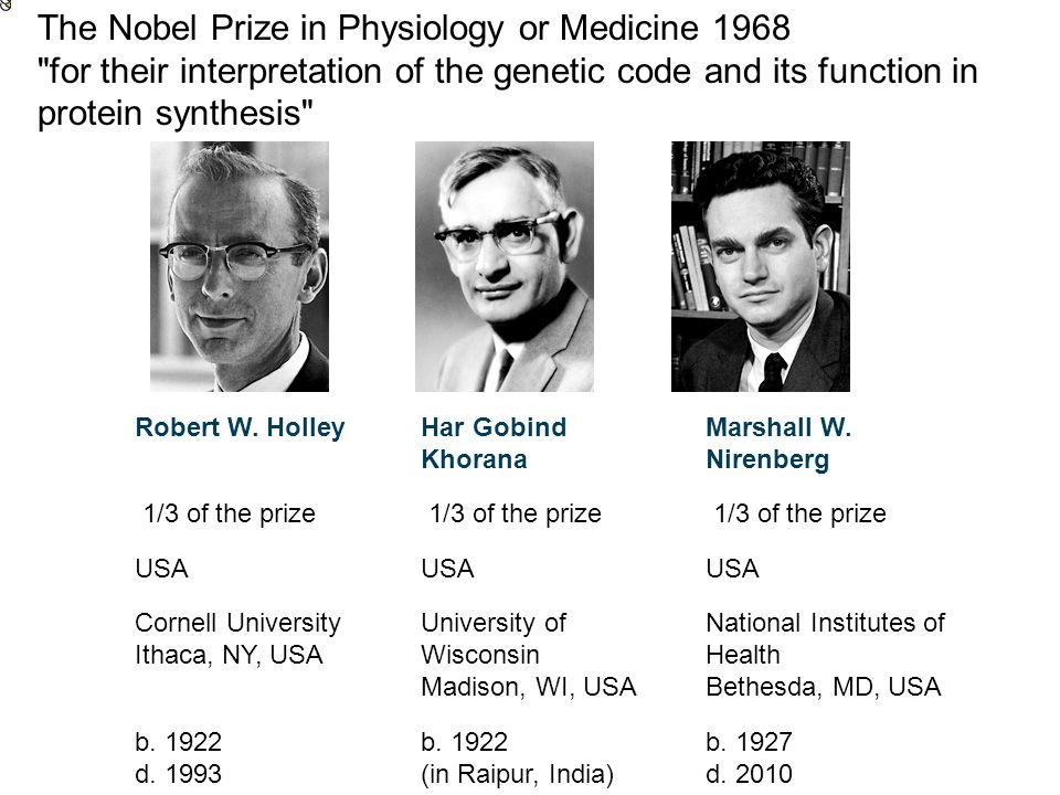 The Nobel Prize in Physiology or Medicine 1968