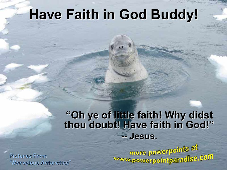 Oh ye of little faith! Why didst thou doubt! Have faith in God!