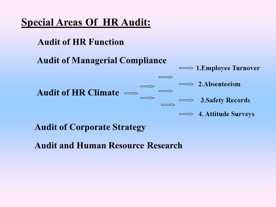Special Areas Of HR Audit: