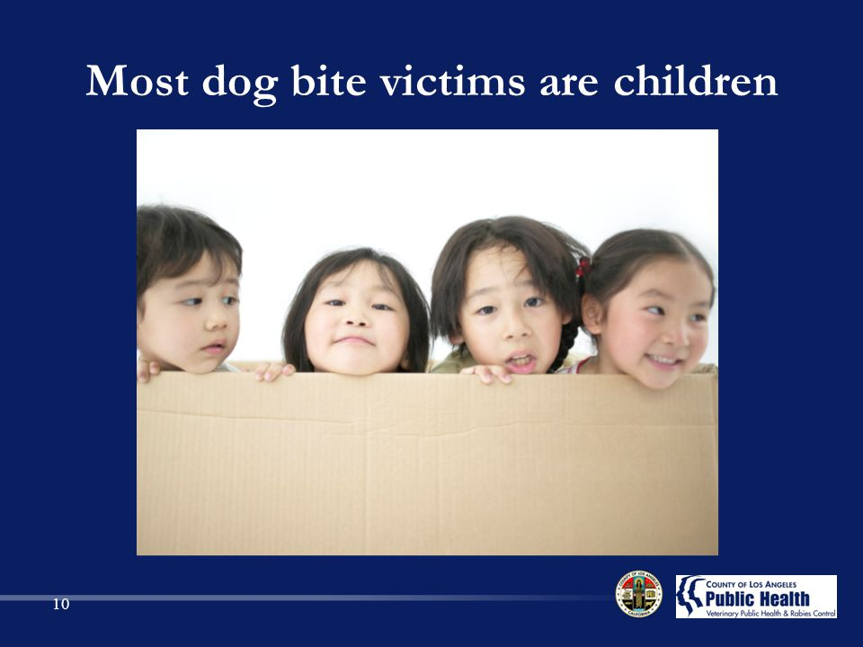 Most dog bite victims are children