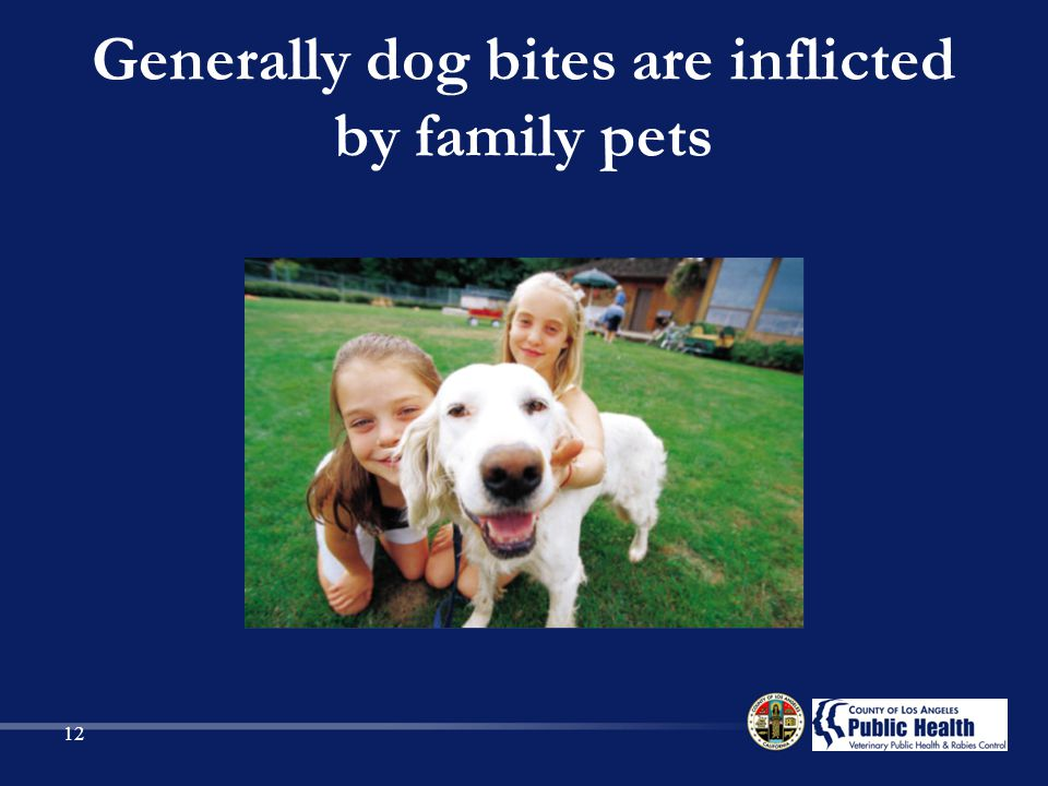 Generally dog bites are inflicted by family pets