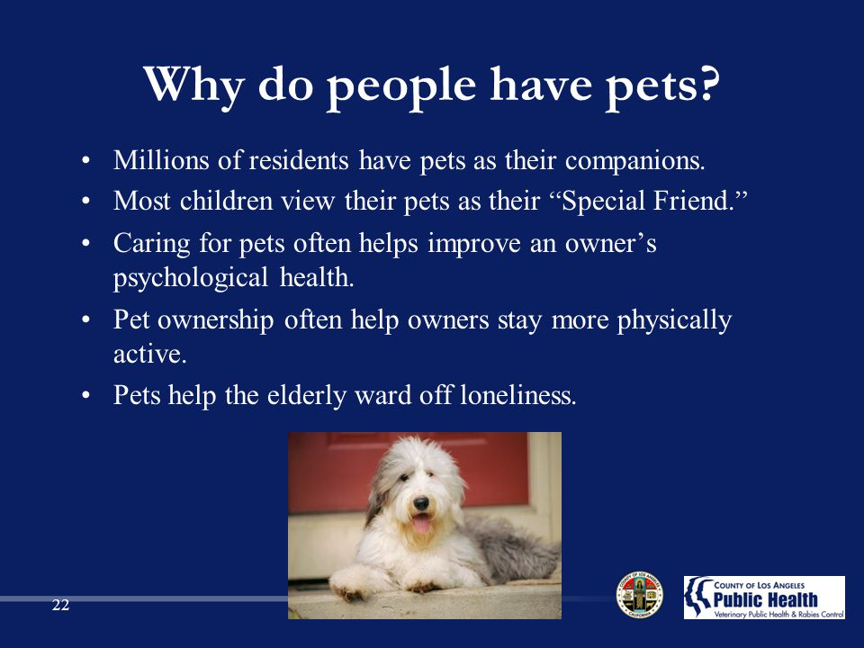 Why do people have pets Millions of residents have pets as their companions. Most children view their pets as their Special Friend.