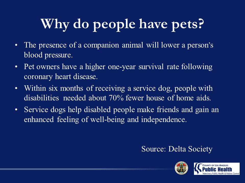 Why do people have pets The presence of a companion animal will lower a person's blood pressure.