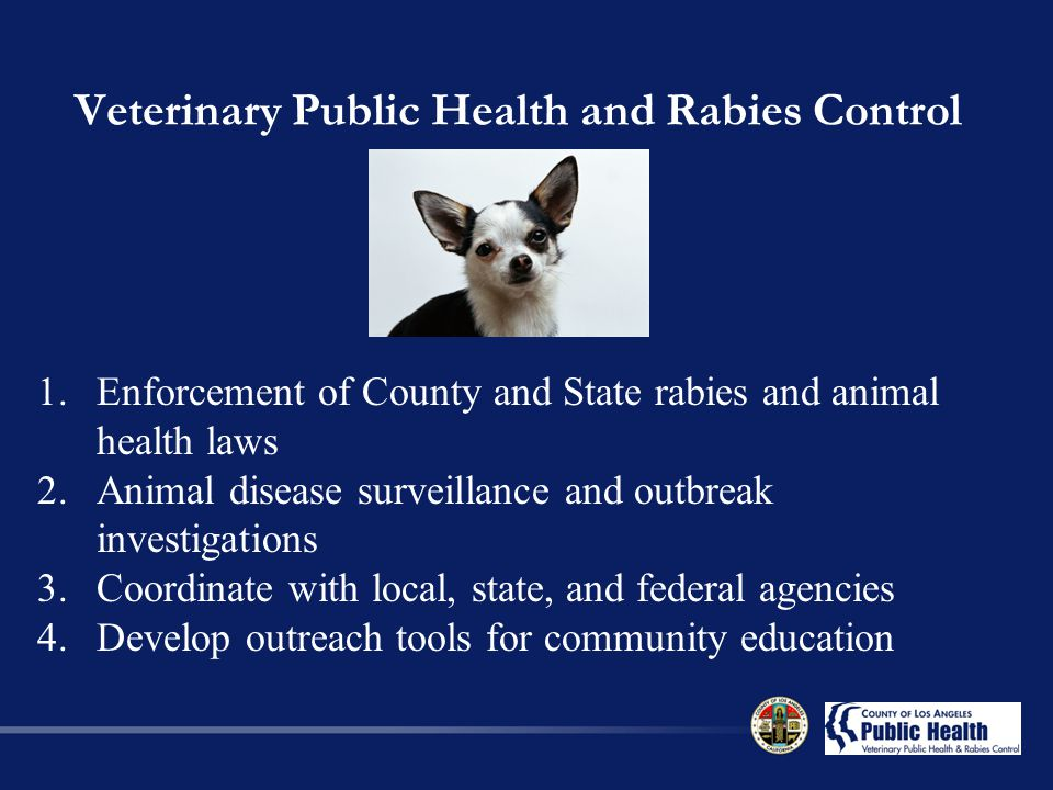 Veterinary Public Health and Rabies Control