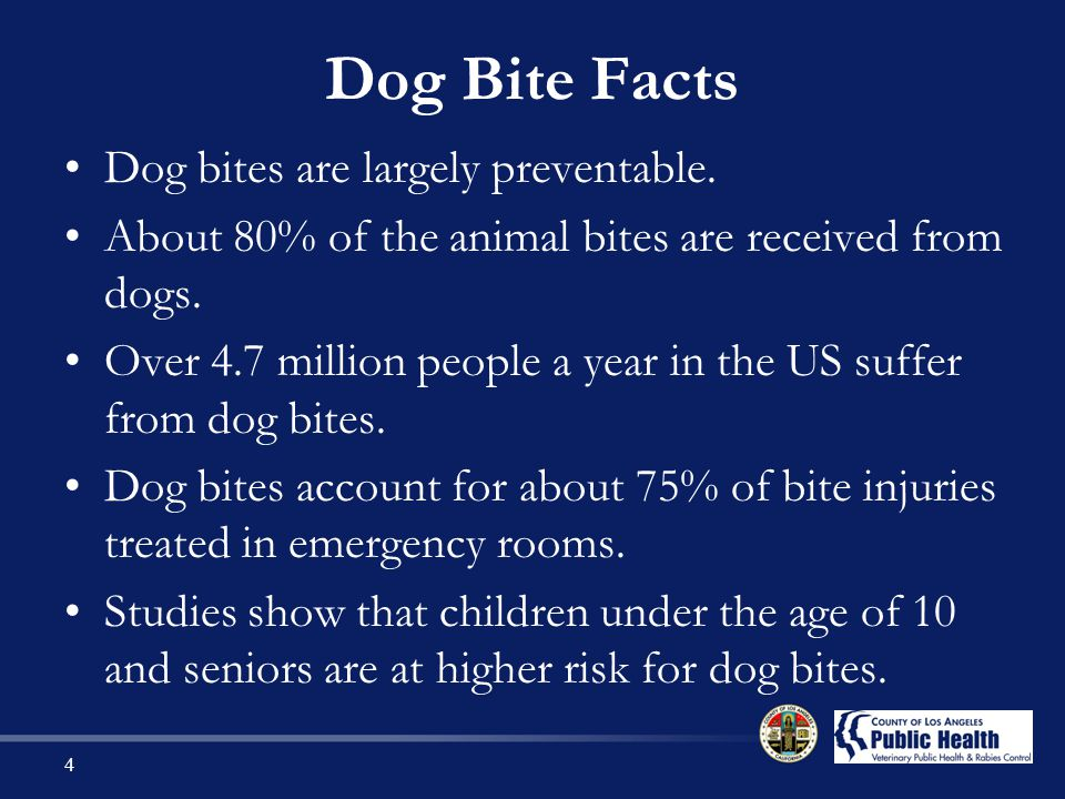 Dog Bite Facts Dog bites are largely preventable.