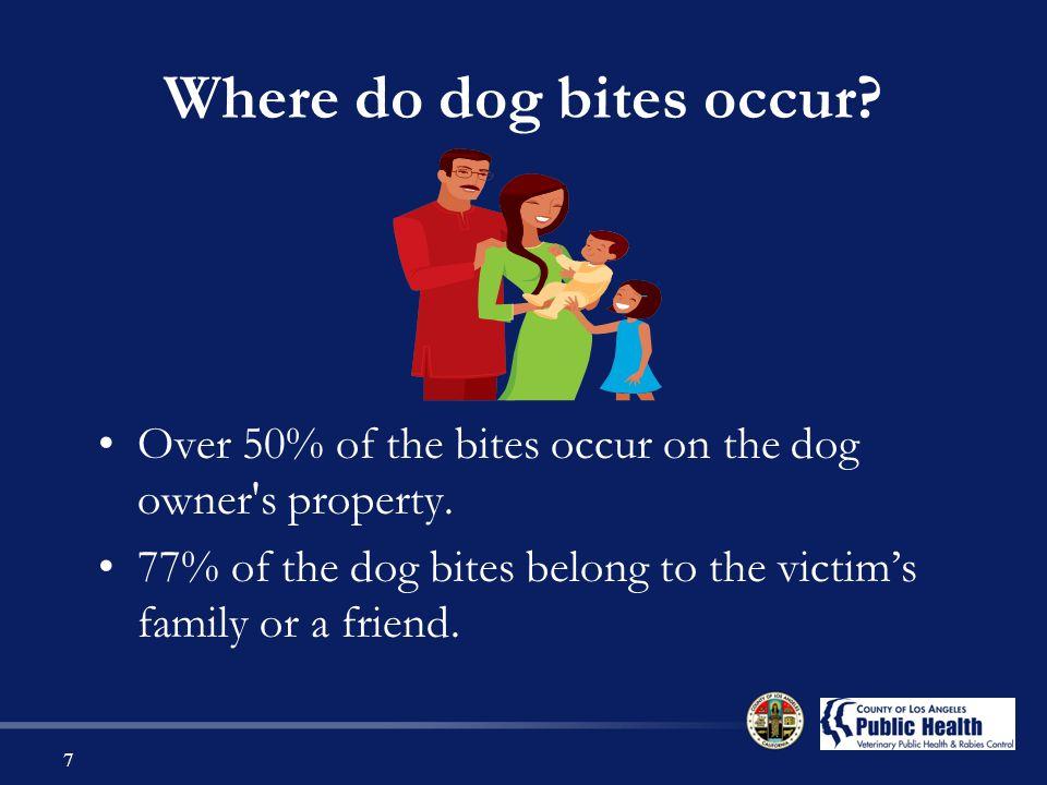 Where do dog bites occur