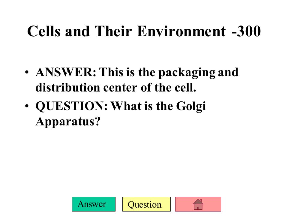 Cells and Their Environment -300