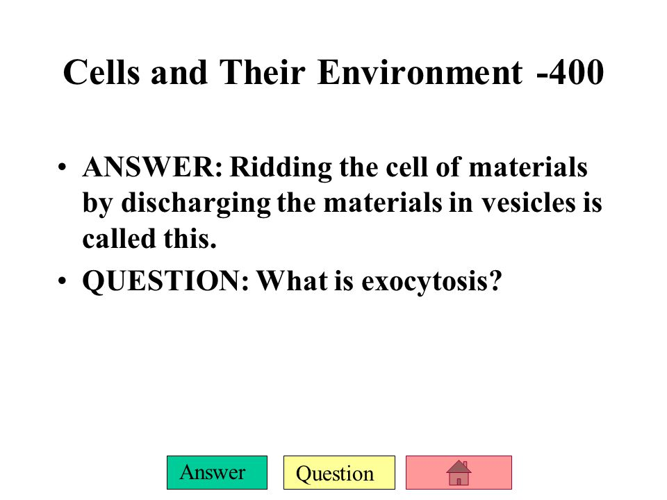 Cells and Their Environment -400