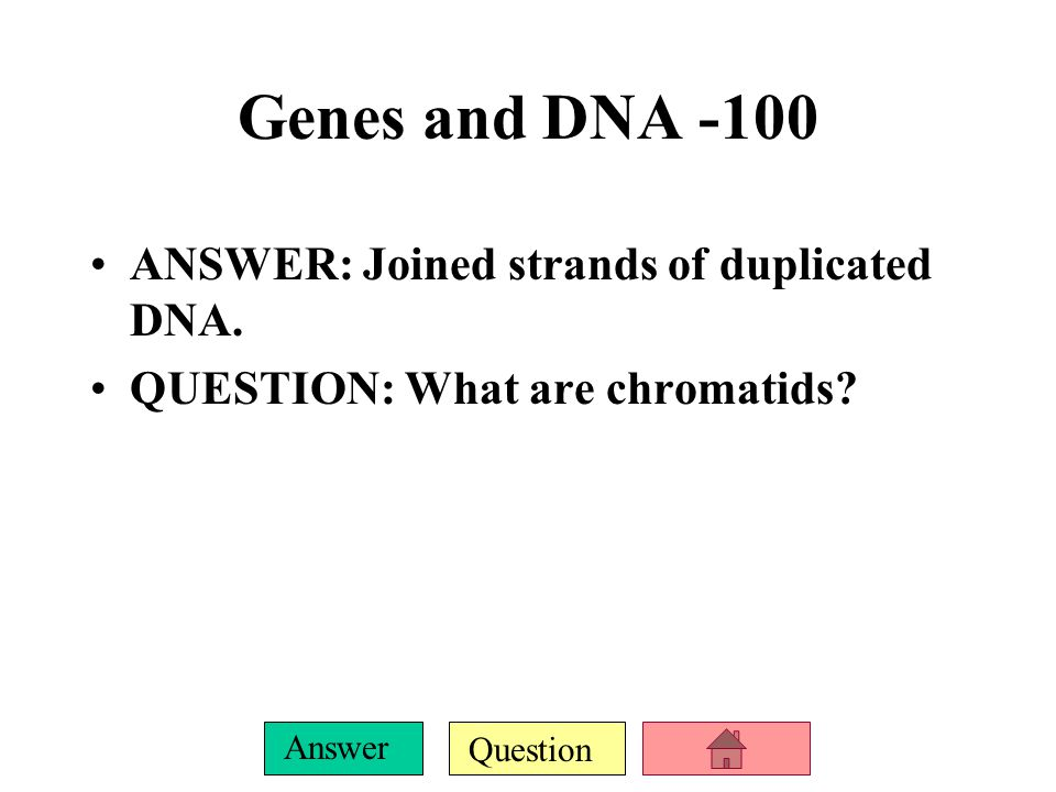 Genes and DNA -100 ANSWER: Joined strands of duplicated DNA.