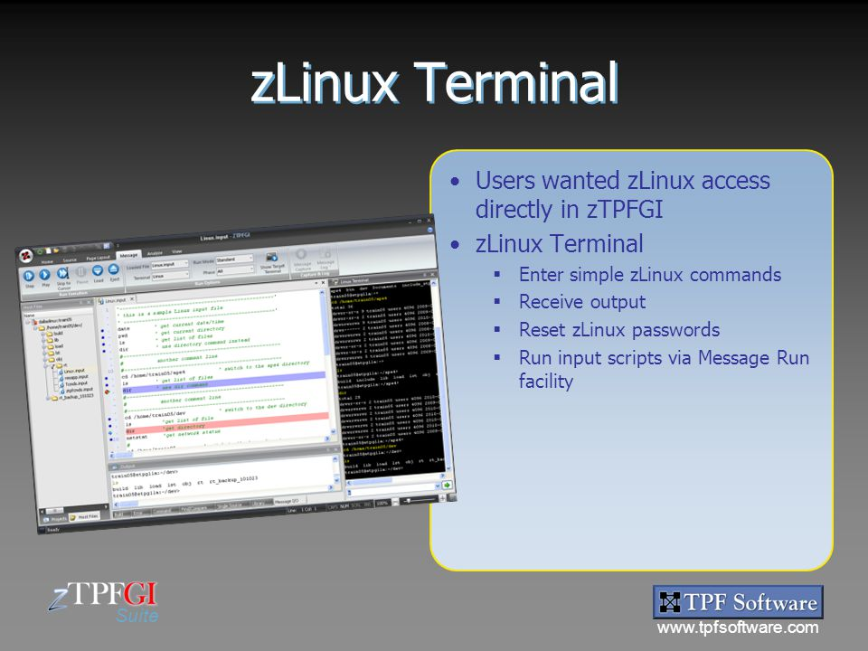 zLinux Terminal Users wanted zLinux access directly in zTPFGI