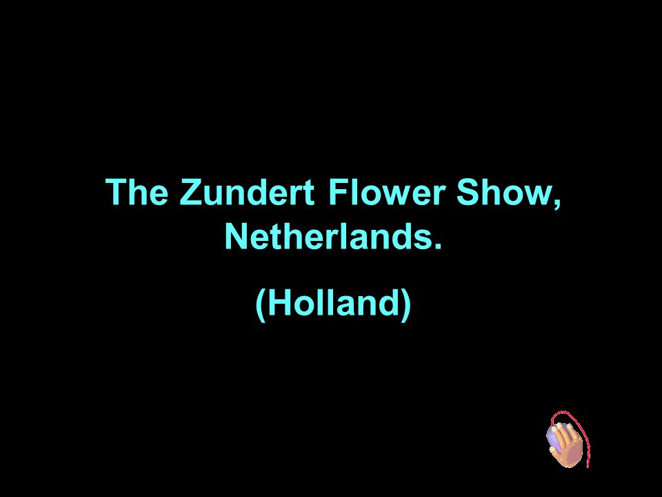 The Zundert Flower Show, Netherlands.