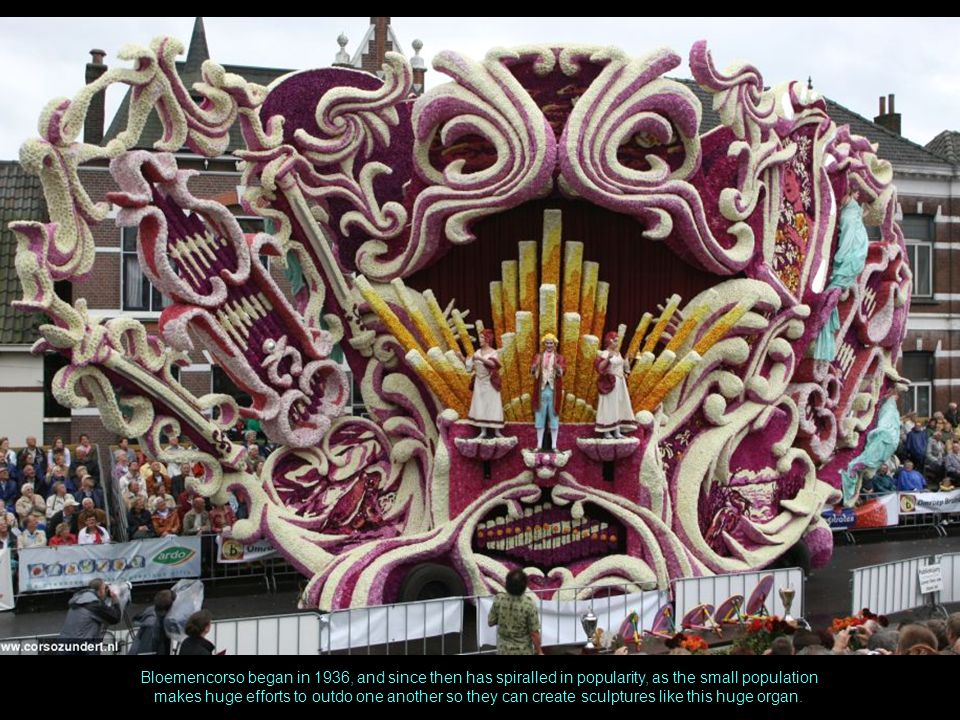 Bloemencorso began in 1936, and since then has spiralled in popularity, as the small population makes huge efforts to outdo one another so they can create sculptures like this huge organ.