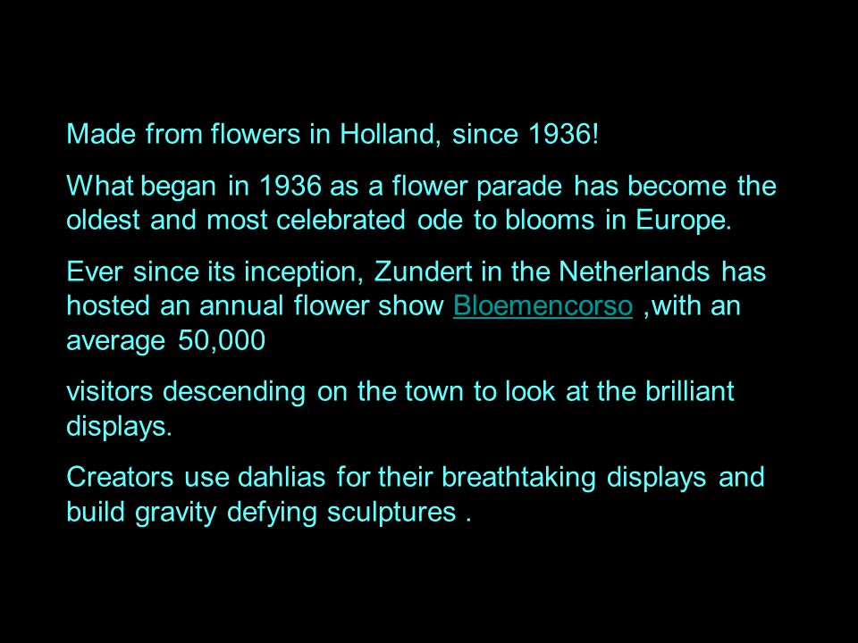 Made from flowers in Holland, since 1936!