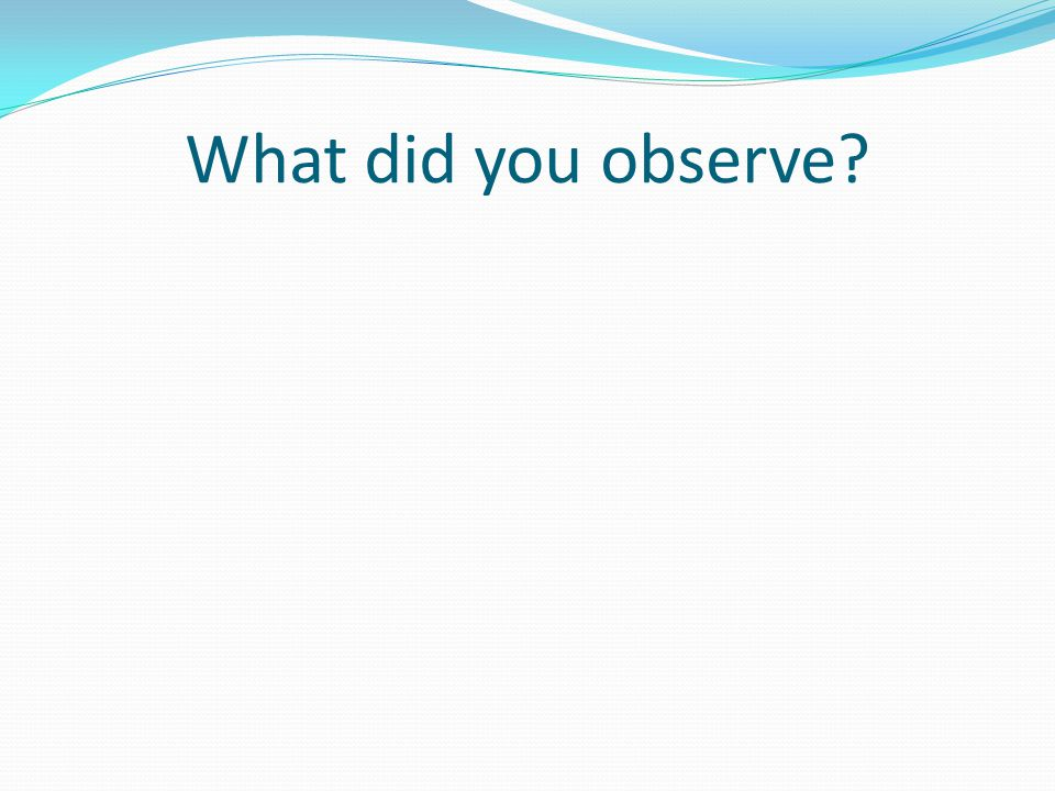 What did you observe