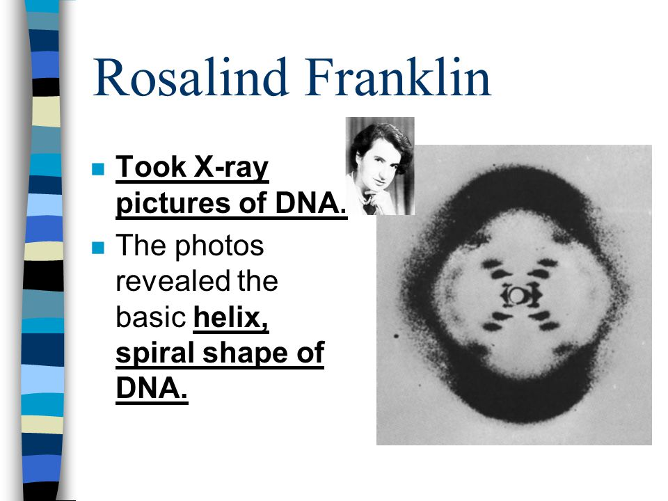Rosalind Franklin Took X-ray pictures of DNA.