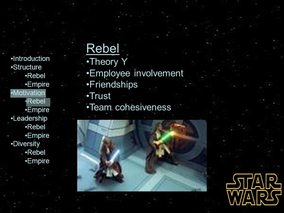 Rebel Theory Y Employee involvement Friendships Trust
