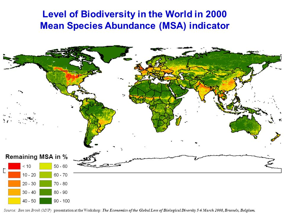 Level of Biodiversity in the World in 2000