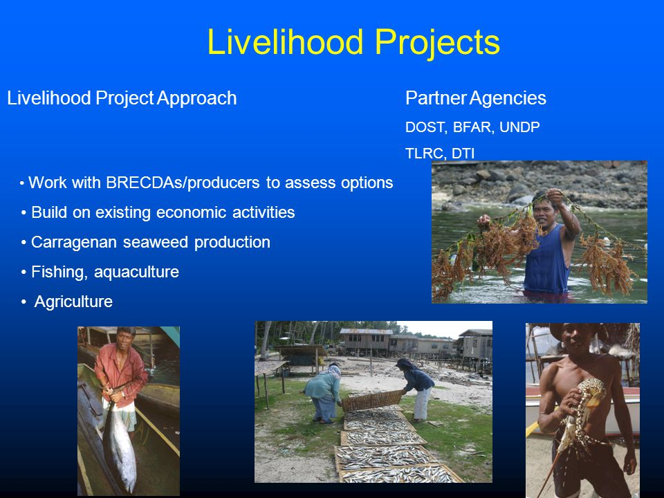 Livelihood Projects Livelihood Project Approach Partner Agencies