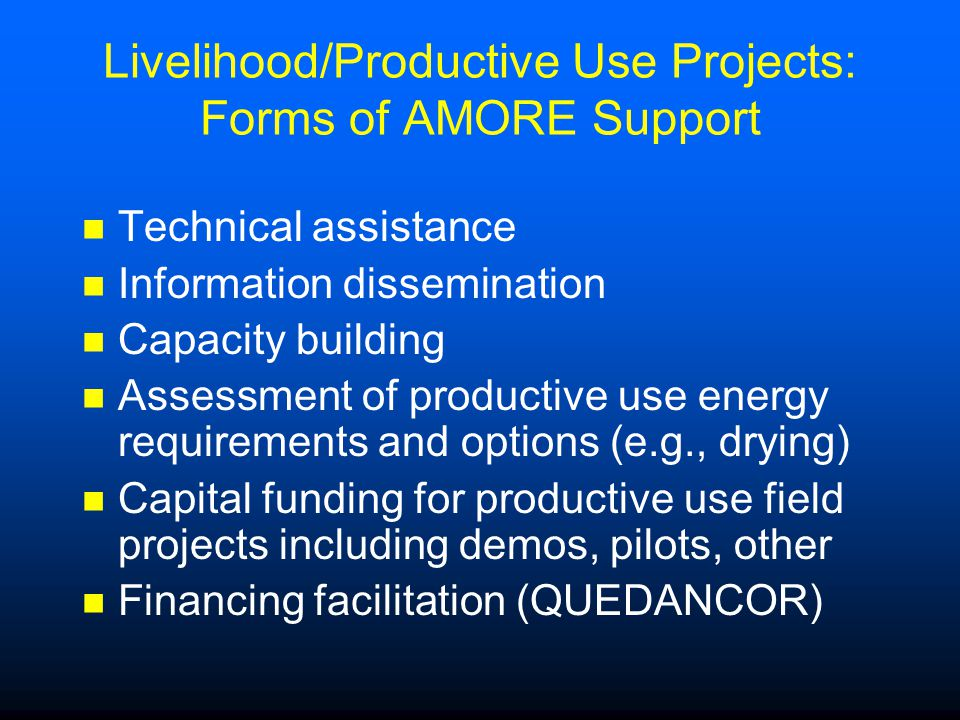 Livelihood/Productive Use Projects: Forms of AMORE Support