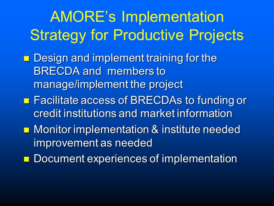 AMORE's Implementation Strategy for Productive Projects