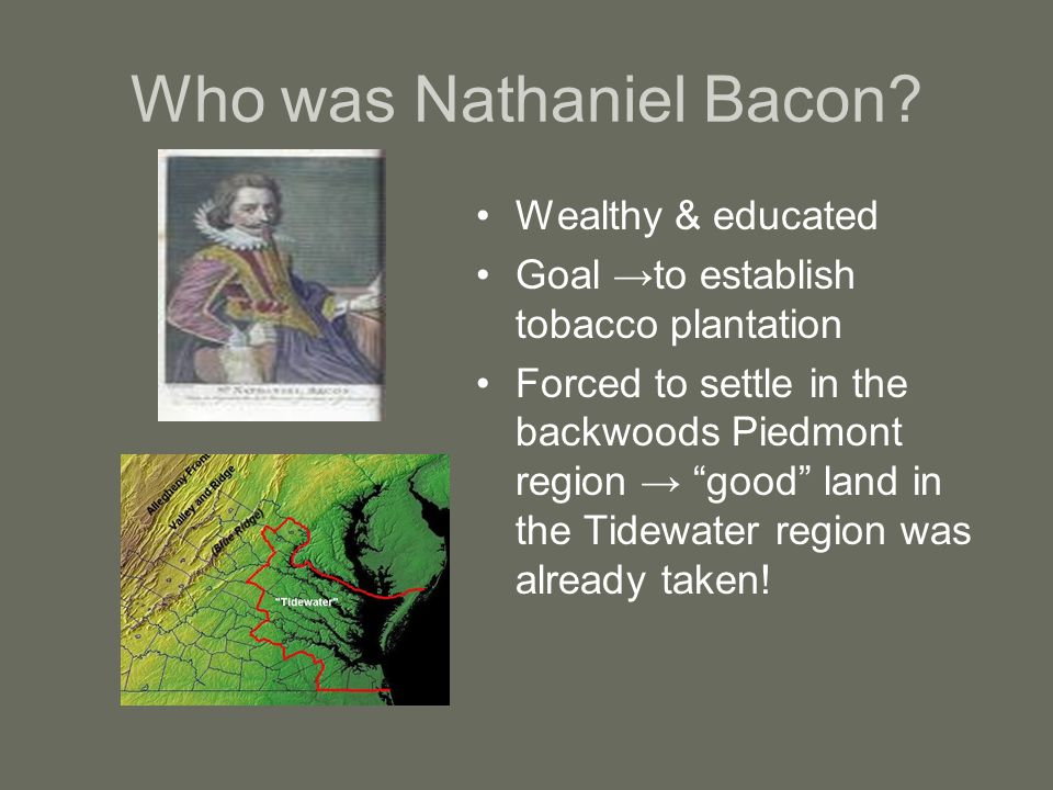 Who was Nathaniel Bacon