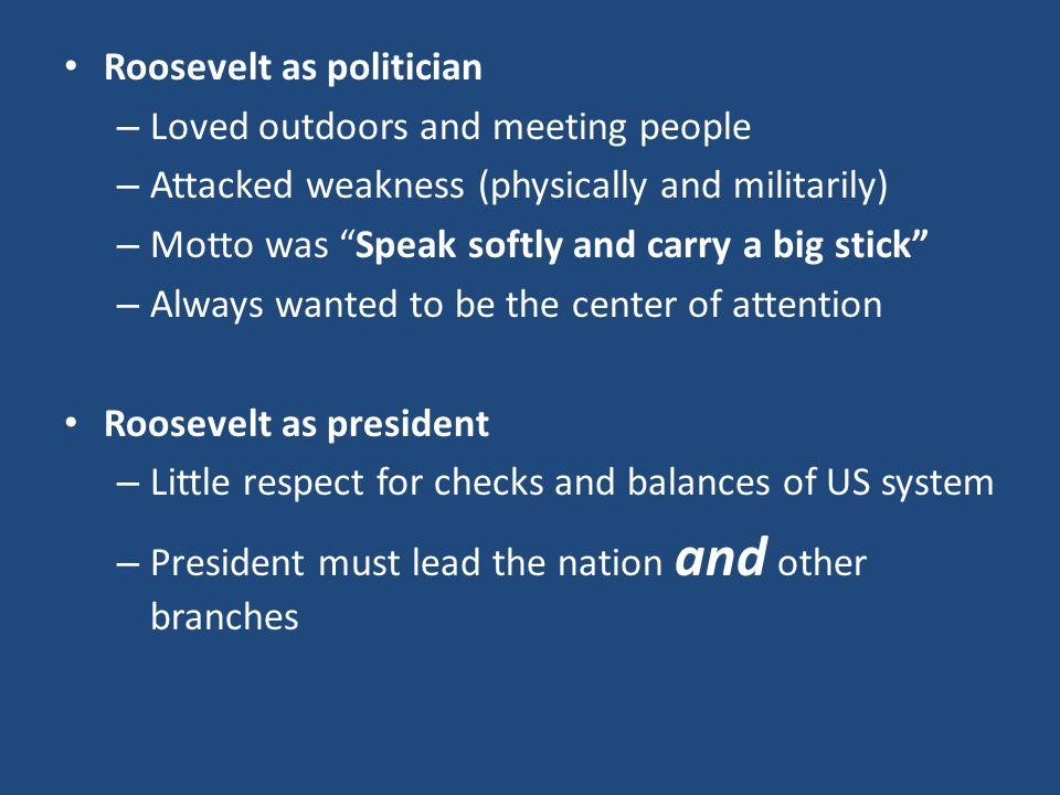 Roosevelt as politician