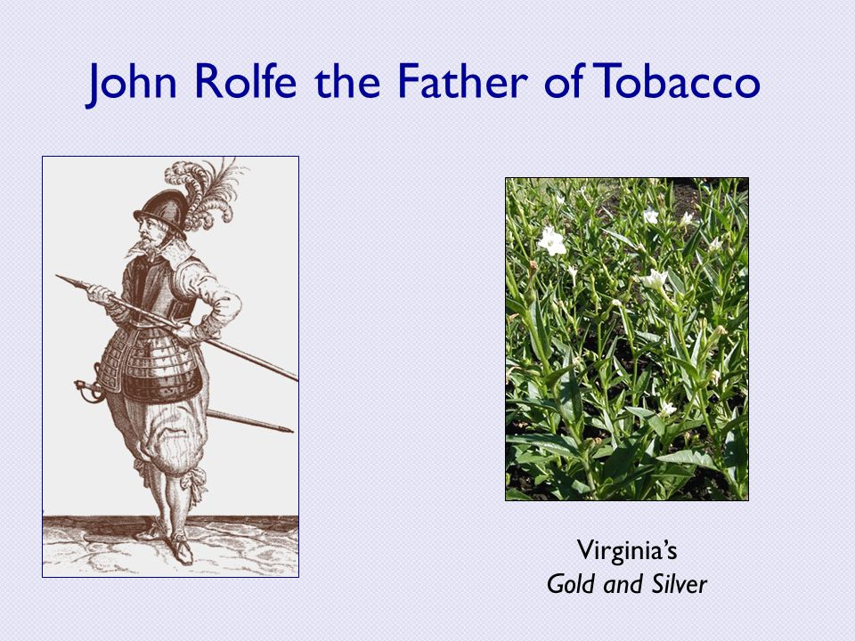 John Rolfe the Father of Tobacco