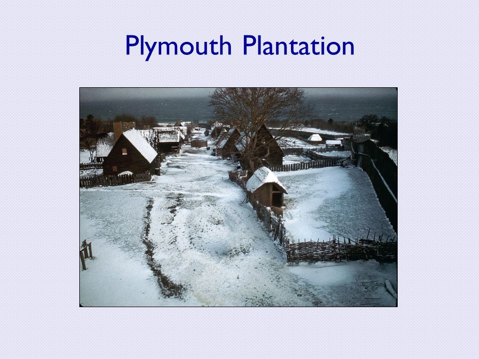the puritan philosophy in of plymouth plantation by william bradford   examination of puritan philosophy in william bradfords on p essay  research paper examination of the puritan philosophy in of plymouth  plantation